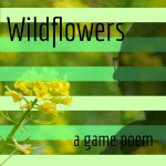 wildflowers cover art