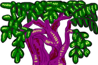 ropy purple treetop