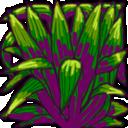 spiky bush